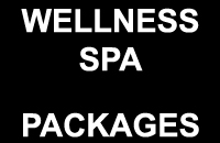 packages-wellnessspa